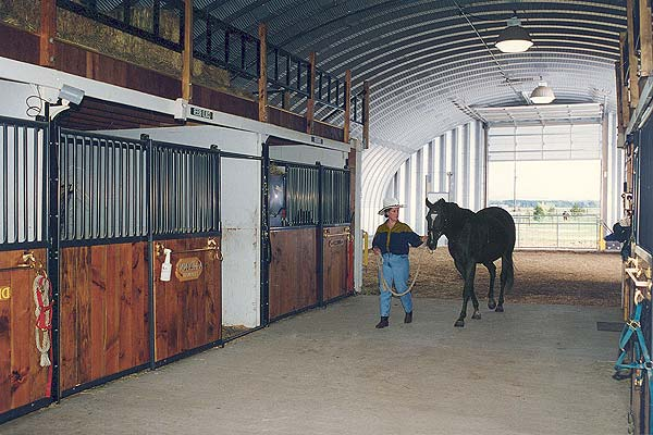 Horse Barns Do It Yourself : International steel span horse barns riding arena metal